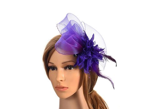 Chique Paarse Fascinator