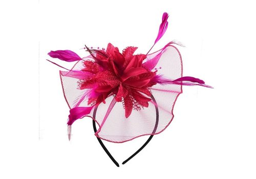 Elegante  Fascinator / Birdcage Veil  - Roze