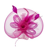 thumb-Stijlvolle Fascinator / Birdcage Veil  - Roze-1
