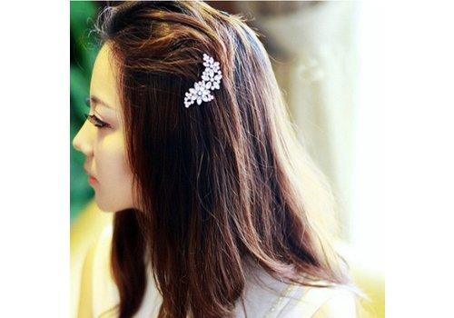 Prachtige Bloemen Haarclip