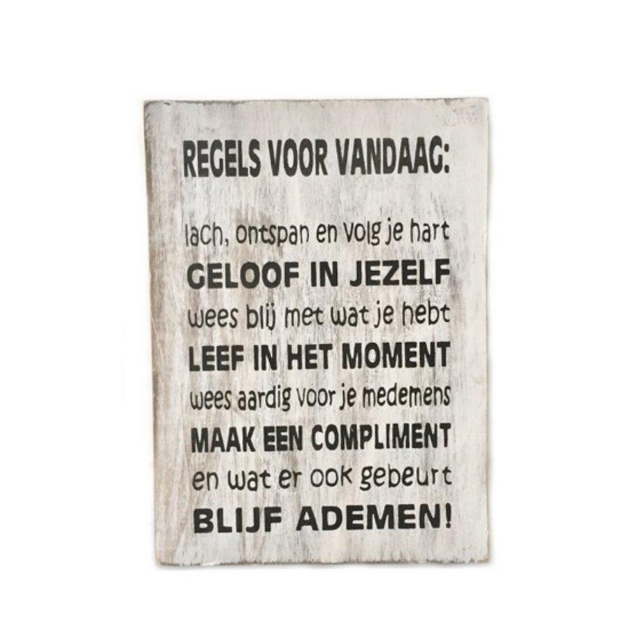 """Houten Tekstplank / Tekstbord 25X18cm """"Regels voor Vandaag...."""" - Kleur Antique White-1"""