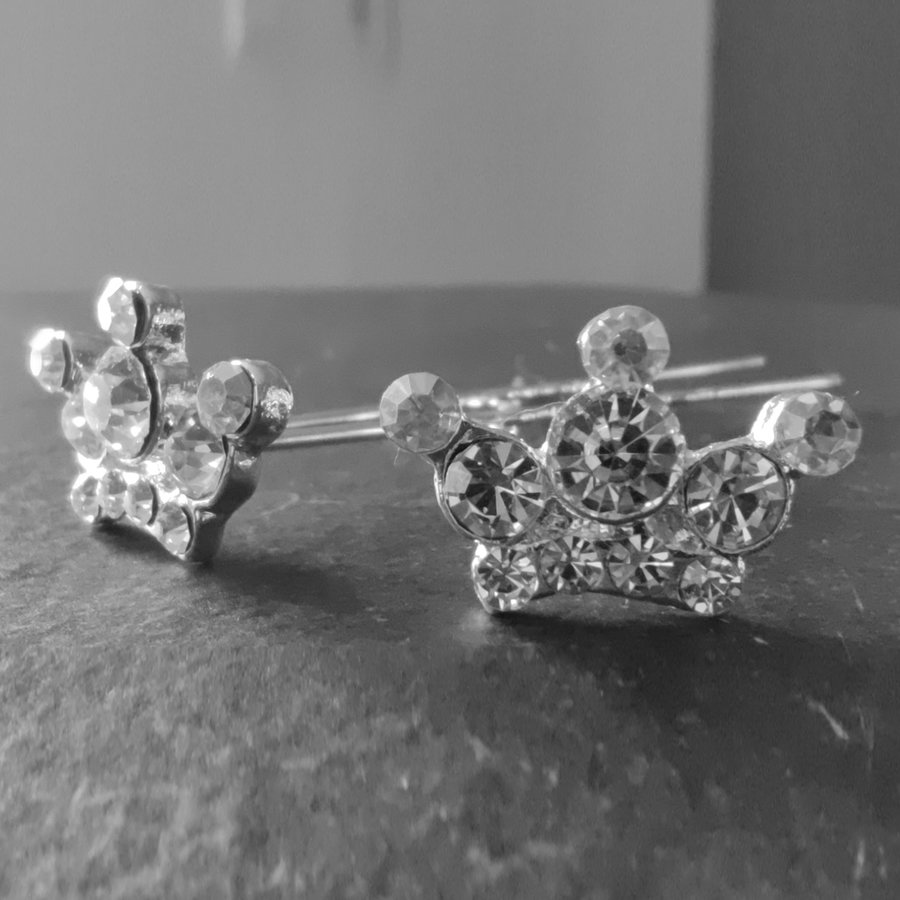PaCaZa - Zilverkleurige Hairpins - Kroontje met Diamantjes - 5 stuks-4