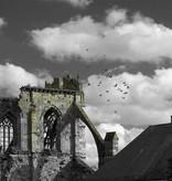 Marcel Batist Pigeons Flight
