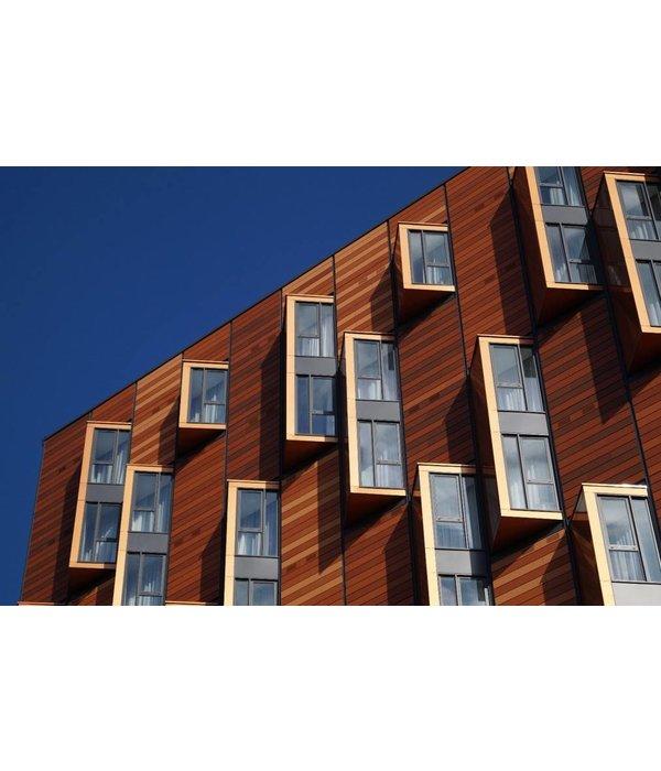 Hans van Bree Windows