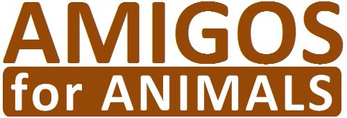 AMIGOS Haustiere webshop