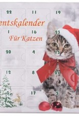 Adventskalender kat, gevuld met speelgoed