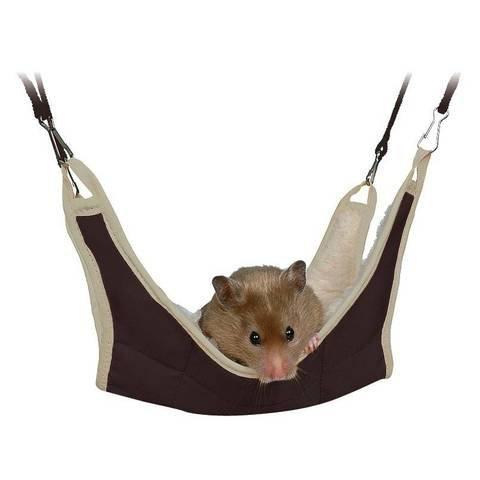 Hangmatje Rat, Hamster