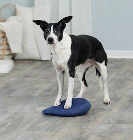 Dog Activity Balanskussen