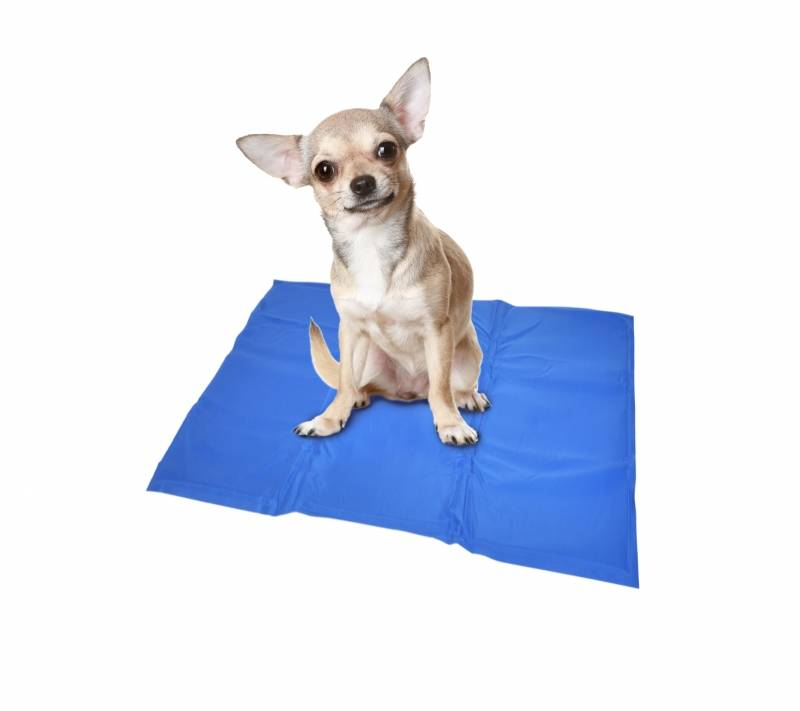 Koelmat voor honden. 40x50 cm