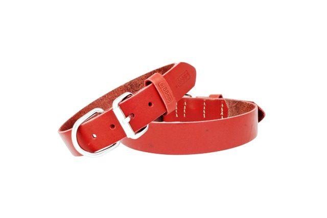 Halsband Leer, In 8 lengtes en 5 kleuren.