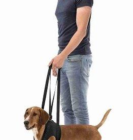 Loophulp voor honden