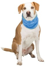 Honden Koel-Bandana