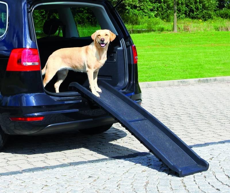 Hondenloopplank kunststof