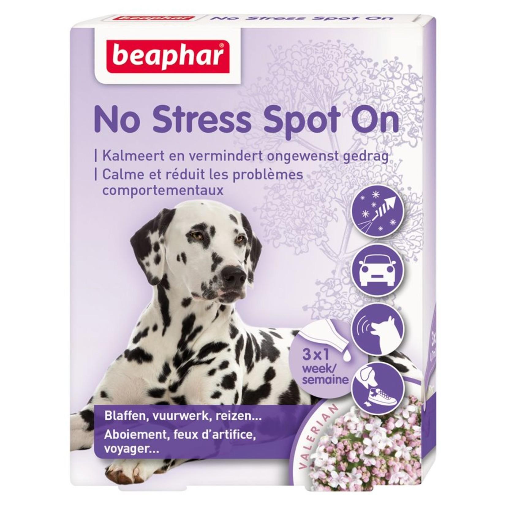 No stress hond. Spot on