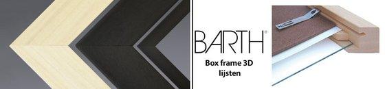 Box frame Barth - 3D houten lijsten