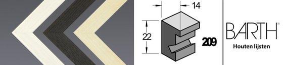 Wissellijst hout serie Barth 209