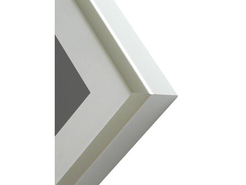 DLF 50x60 cm zilver Pro Line wissellijst  extra solide fotolijsten met een smal profiel.