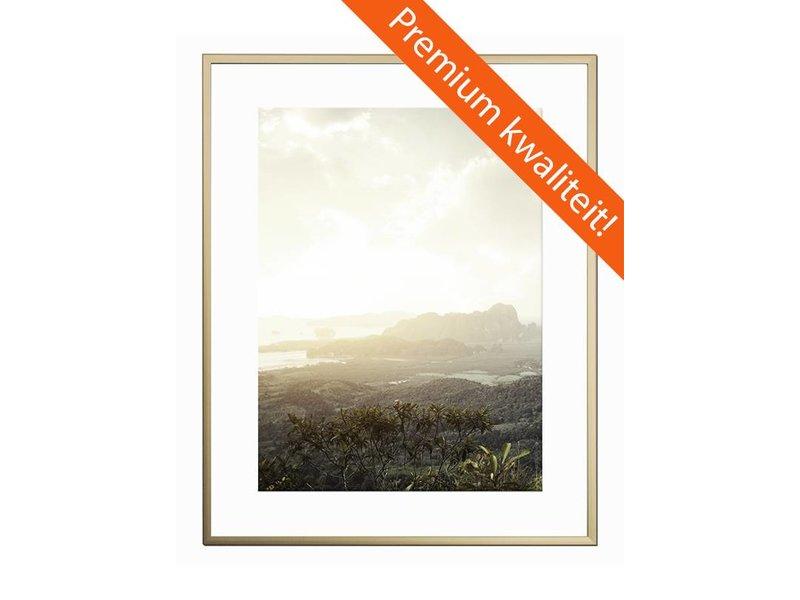 DLF 30x40 cm champagne Pro Line wissellijst  extra solide fotolijsten met een smal profiel.