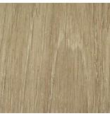 Wash Oak PZ906