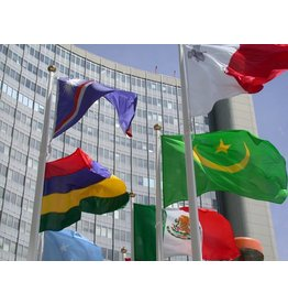 Mât de drapeaux avec câble de levage interne