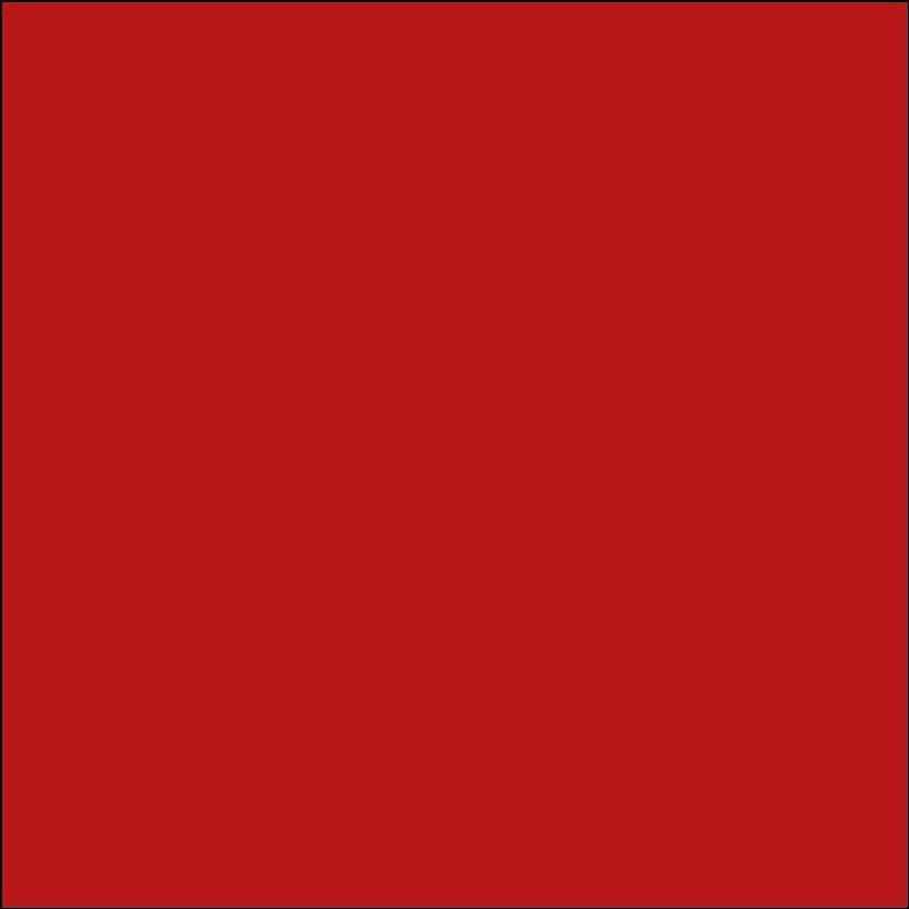 Oracal 631: Red Mat