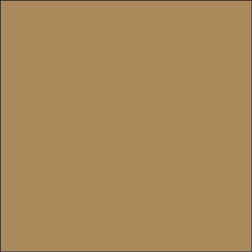 Oracal 651: Licht bruin RAL 1011