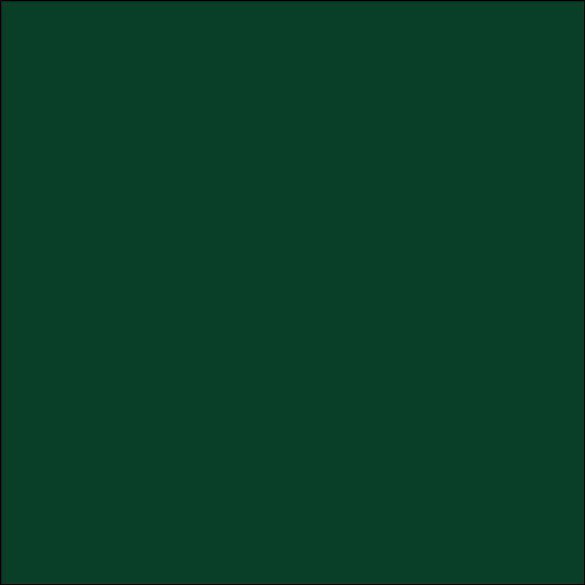 Oracal 651: Vert foncé