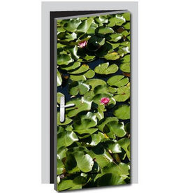 Water lilies Door sticker