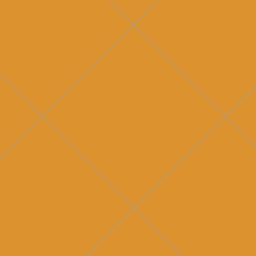 Oralite 5500: Reflective oranje