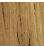 Película interior Beauty Of Pine