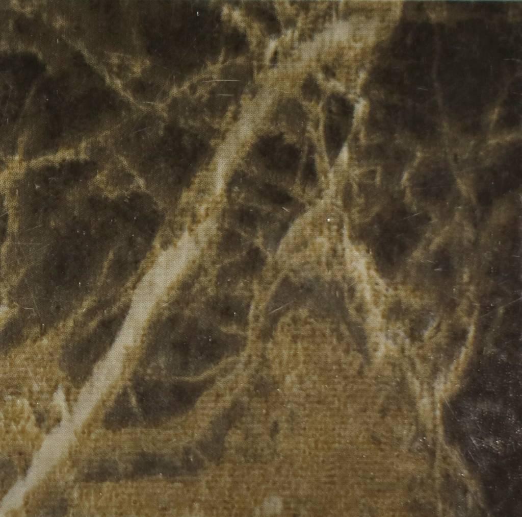 Interieurfolie Dark Mable Gloss