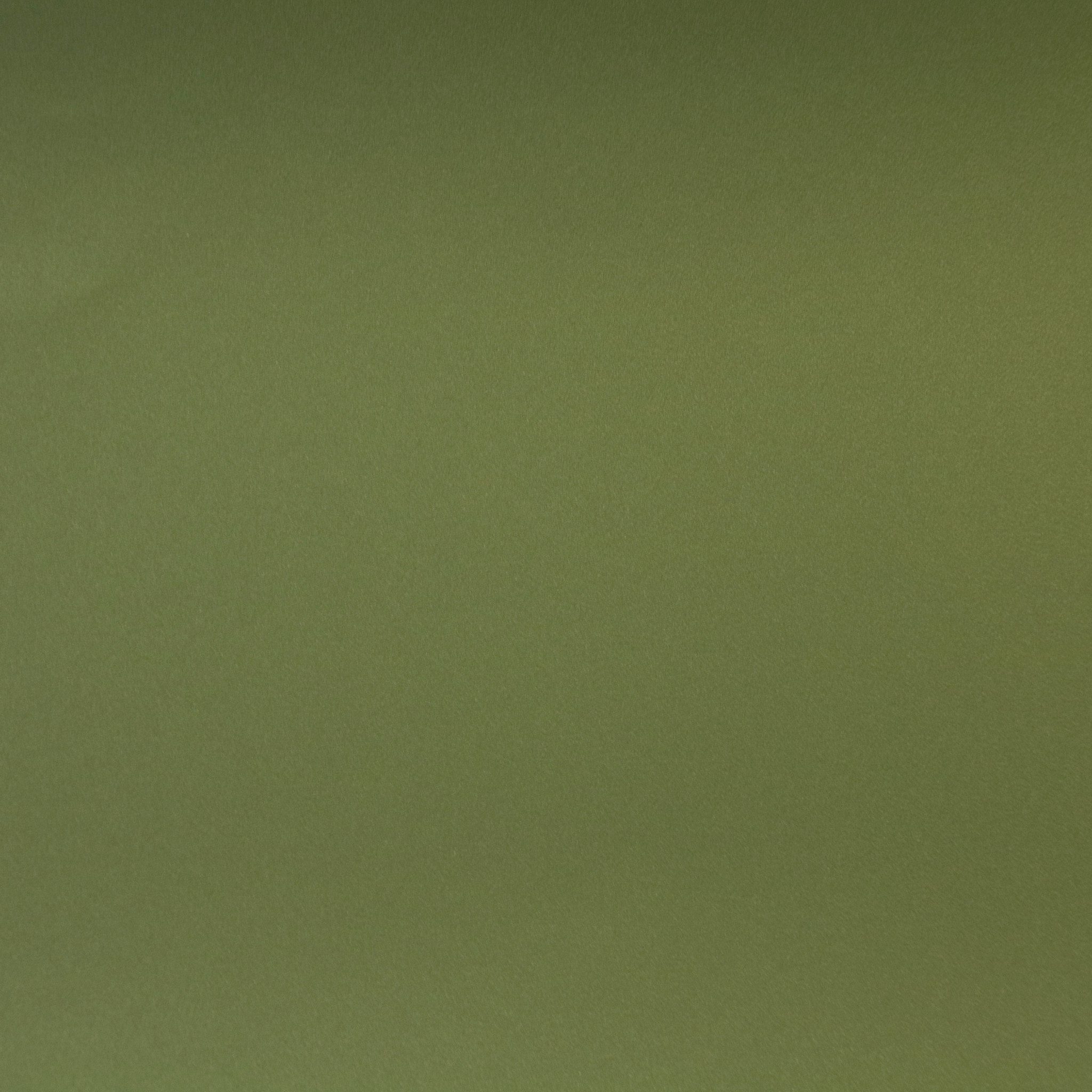 Interieurfolie Military Green