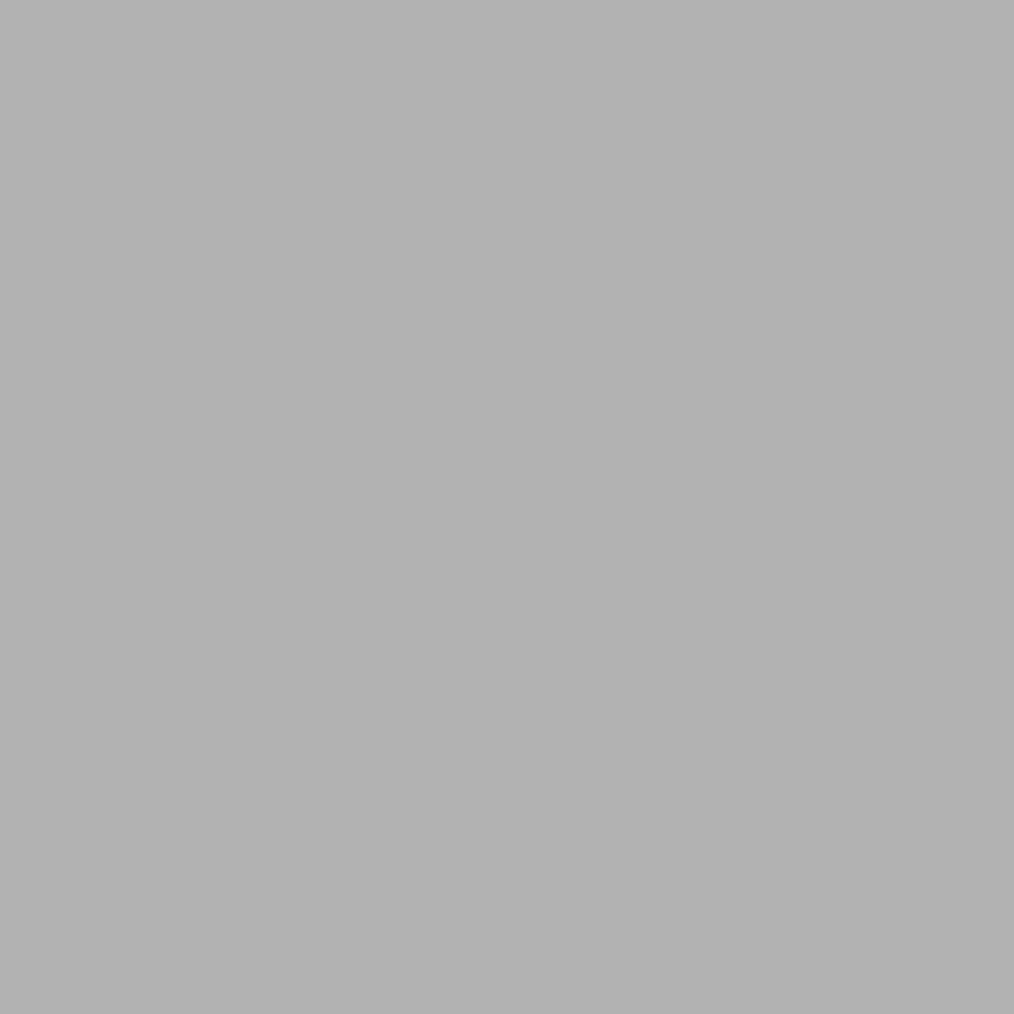 Avery Avery Facade Film RAL9006 White Aluminium Gloss