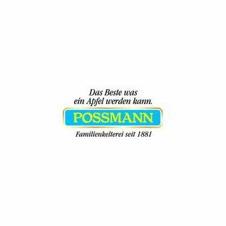 Possmann Possmann Apfelschorle klar 24 x 0,33 Glas