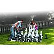 Pièces d'échecs Rolly Toys