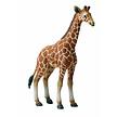 Collecta jouet figure girafe veau