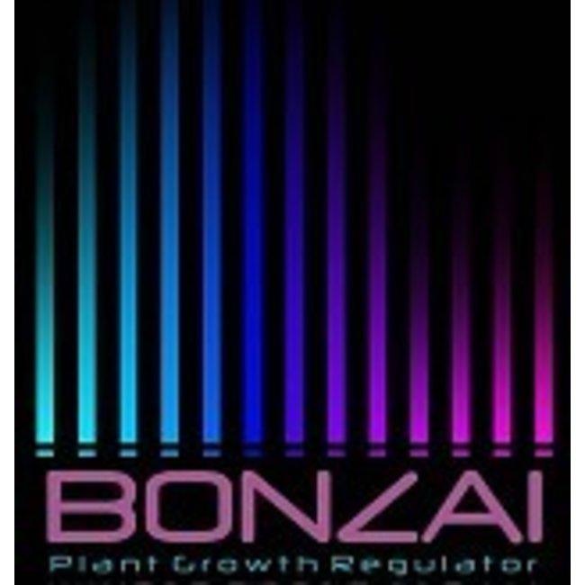 Bonzai Winter Boost 3g Aromatic Potpourri