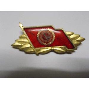 Bestenabzeichen Gold Kampfgruppe