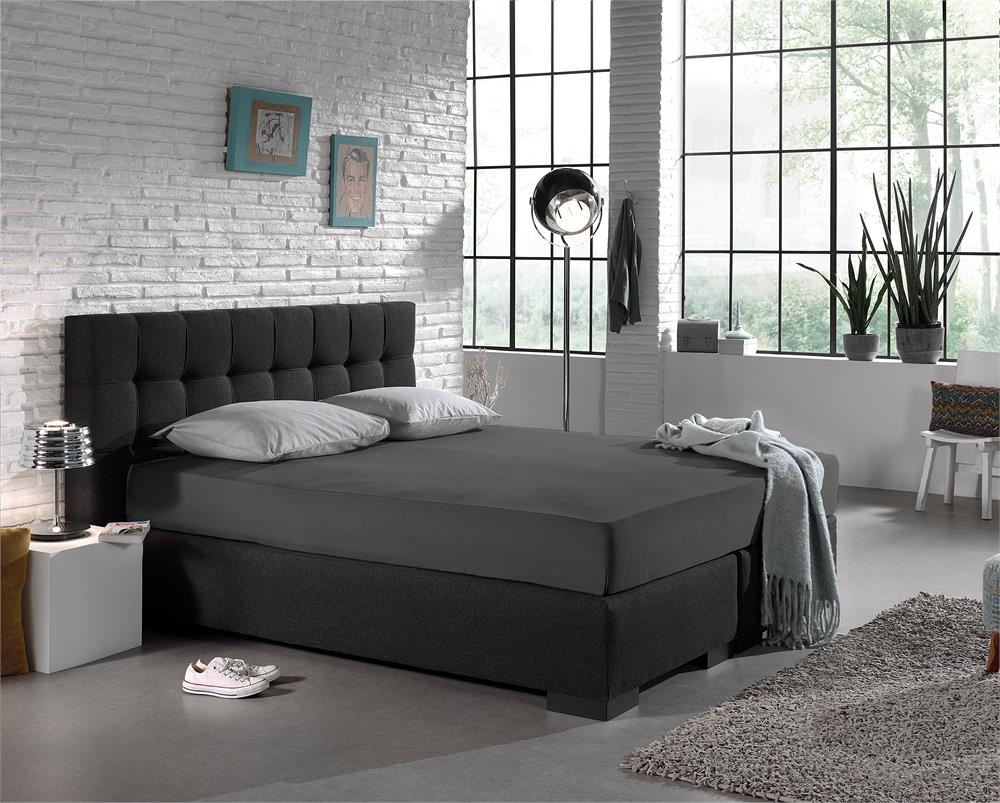 Dreamhouse Hoeslaken Jersey 135 gr. [Extra Lang] Anthracite