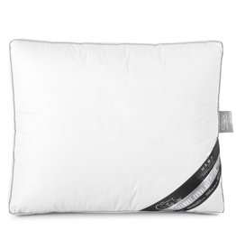 Sleeptime 3 Chamber Box Pillow White