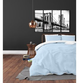 Zensation Twin Face Blue/White
