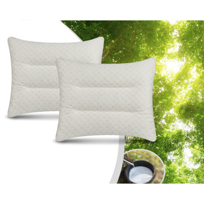 Swiss Nights 2Pack Latex Firm Pillow White