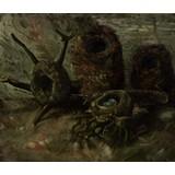 Birds' Nests - Book / Magazine / Flyer