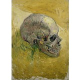 Skull - Card / A4 reproduction