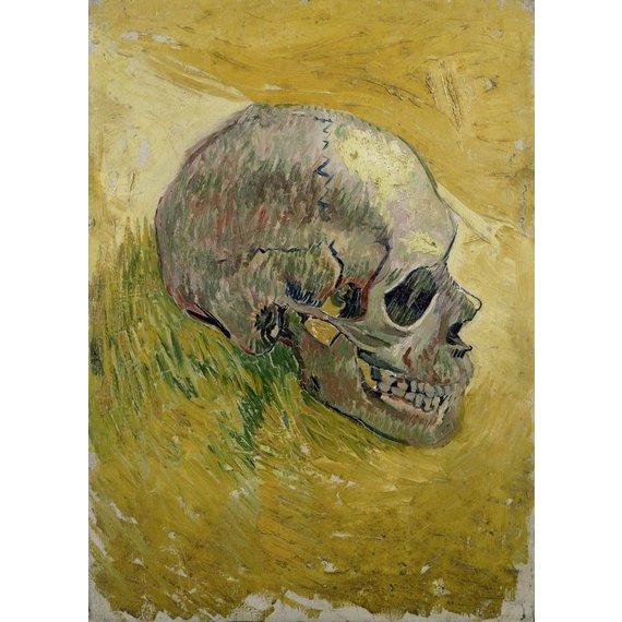 Skull - Book / Magazines / Flyer