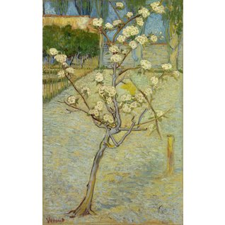 Small Pear Tree in Blossom - Card / A4 reproduction
