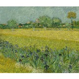 Field with Irises near Arles - Multimedia / Film / Video