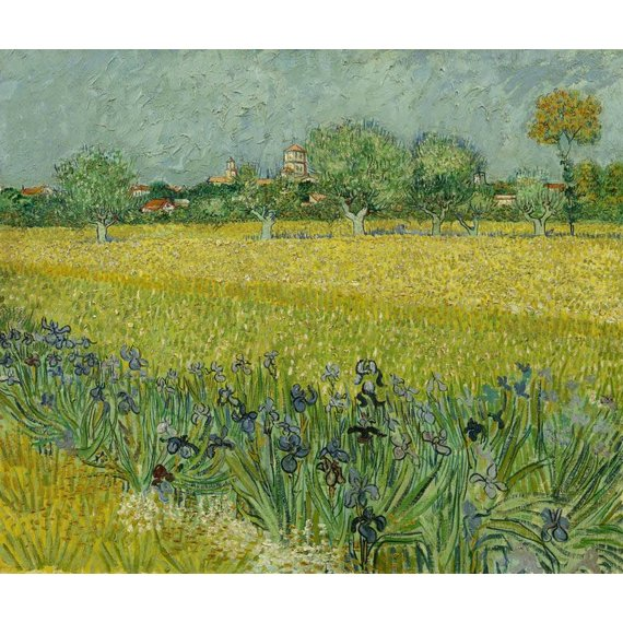 Field with Irises near Arles - Card / A4 reproduction