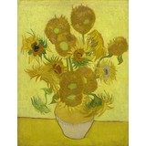 Sunflowers - Book / Magazines / Flyer