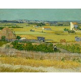 The Harvest - Multimedia / Film / Video